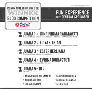 Blog Contest SEO Central Spring Bed